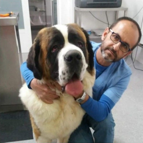Antonio en clínica veterinaria Cruz Verde en Morón de la Frontera