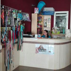 Cruz Verde centro veterinario en Morón de la Frontera bienvenida