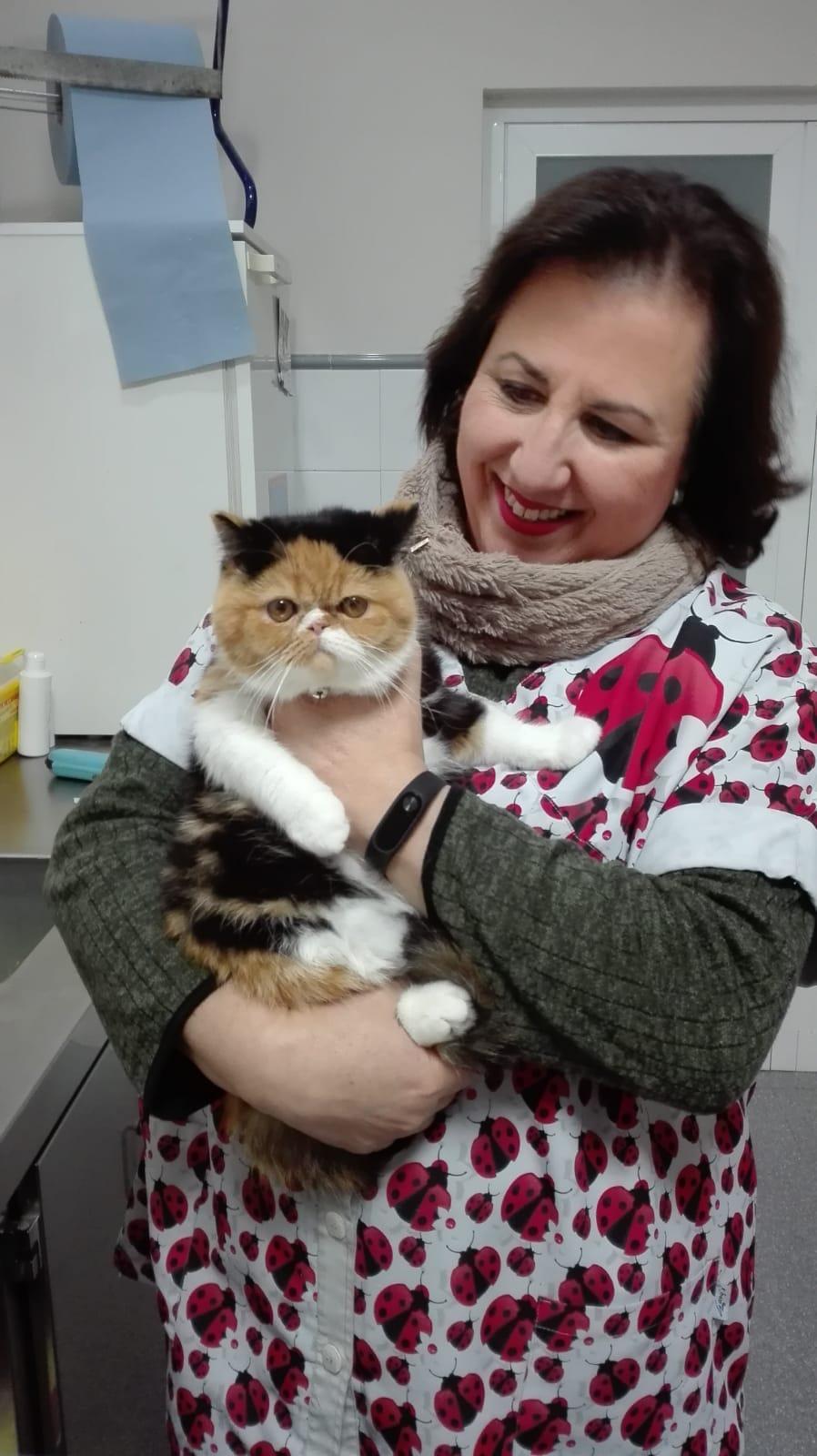 Un día en la consulta veterinaria
