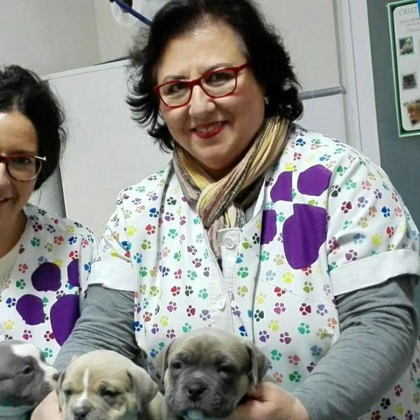M Jesus en clínica veterinaria Cruz Verde en Morón de la Frontera