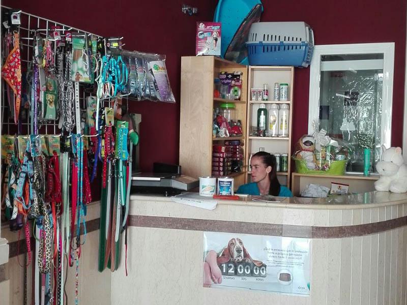 Bienvenido a clínica Cruz Verde, tus veterinarios en Morón